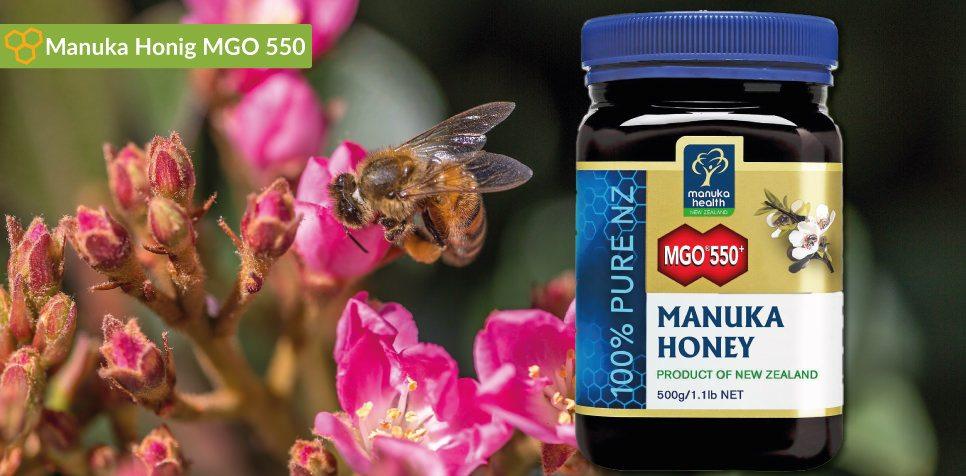 Manuka Honig MGO 550 Preisvergleich: Optimale Wirkung günstig kaufen sowie Tipps zu Anwendung und Dosierung.